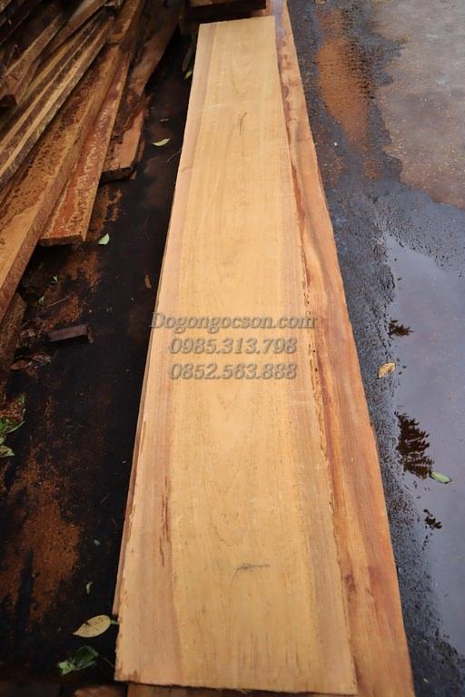 Nhận biết gỗ gụ